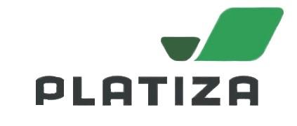 Логотип платиза