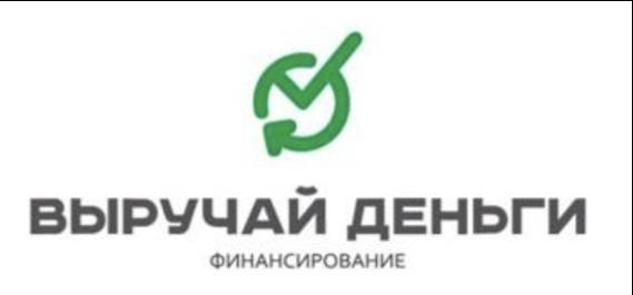 Логотип вд платинум